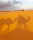TUNISIA.Yoga-Trekking in the Sahara